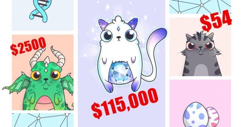 цена на крипто котят